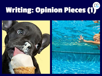 Writing: Opinion pieces (1)